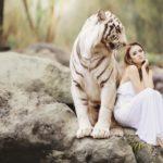 Алхимия на страха – практика и медитация